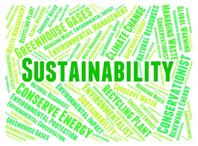 Column: Trends in corporate sustainability initiatives